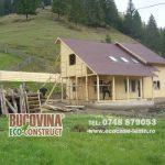 5 motive ce te vor convinge să alegi lemnul pentru construcția casei tale