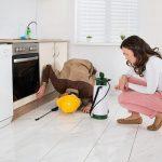 Importanta serviciilor de dezinfectie